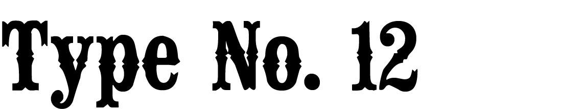 "A Civil War style font called ""Type No. 12"" from the Walden Font Co. It is part of the Civil War Press set of fonts."